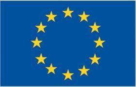 drapeau-UE.jpg