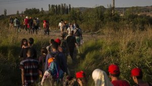 migrants-file-300x170.jpg