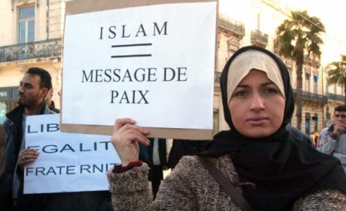 islamisation-france-medias-livre-600x366.png