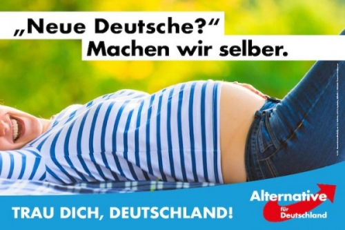 Allemagne-marketing-AfD-600x400.jpg