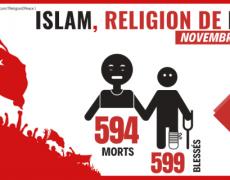 nombre-de-morts-islam-terrorisme-islamisme-monde-novembre-2019-attentats-djihad-230x180.png