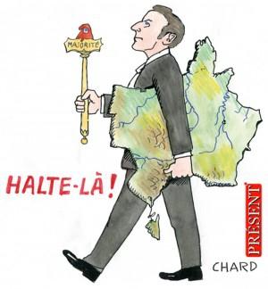 Chard-Législatives-Julien-Sanchez-300x324.jpg