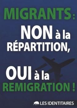 Migrants-remigration-250x350.jpg