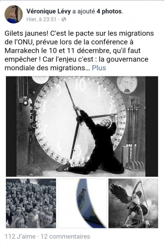 veronique-levy-facebook-1.jpg